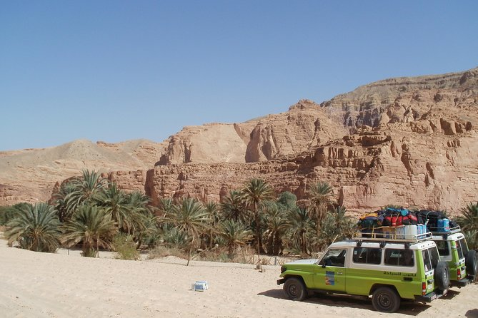 St. Catherine Monastery /The White Canyon/Ain Khudra Oasis Tour from Dahab
