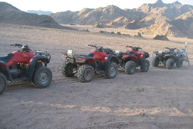 Camel Ride + Blue Hole Snorkel + Quad Bike Tour With Lunch From Dahab photo 1