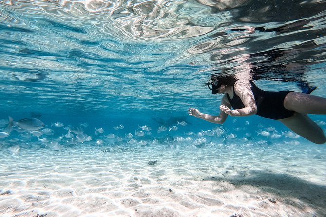 Private Lagoon Snorkel Tour