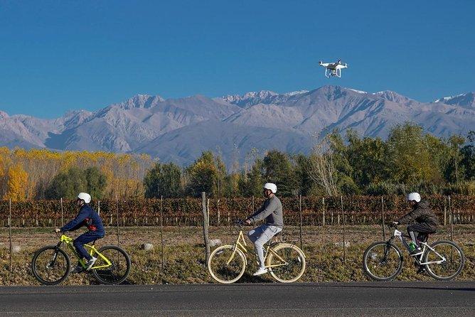 Bike Tour in Uco Valley Wine Region - Clos de los 7 - Full Day
