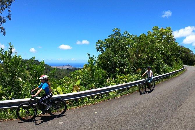 eBike Tour Honolulu Rainforest