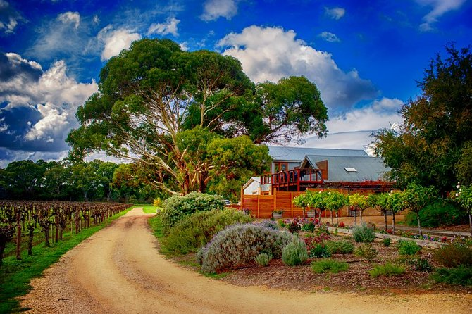 Langhorne Creek Wine Region Small Group Day Trip from Adelaide or Glenelg