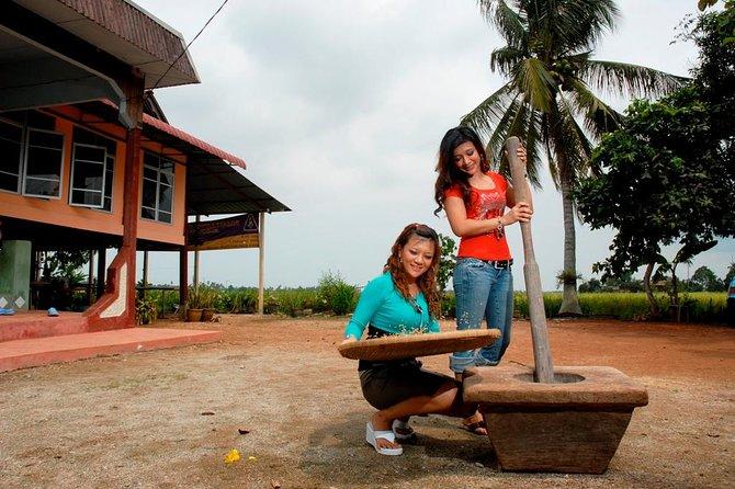 Malaysia Local Experience Tour