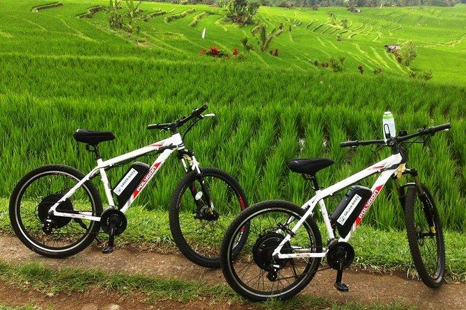 Jatiluwih E-bike