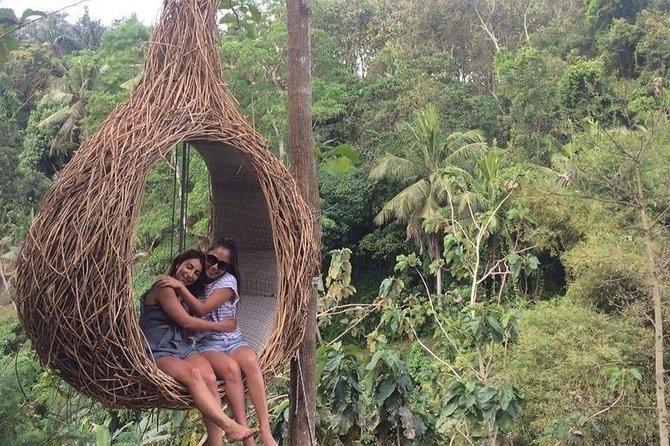 Bali Temple Swing and Swim Private Tour - Free WiFi
