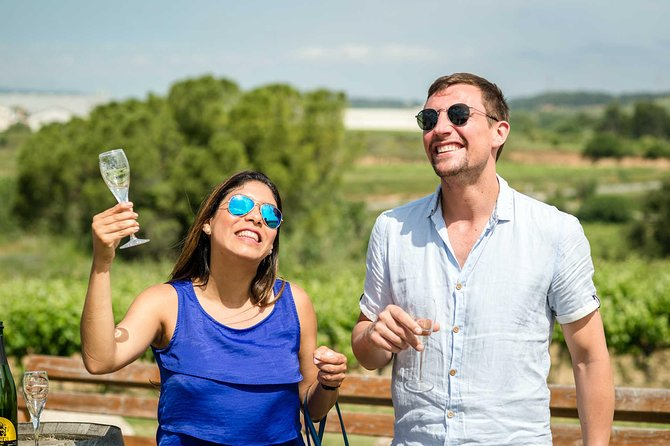 Private Day Trip from Barcelona: Wine Tasting in the Vineyards