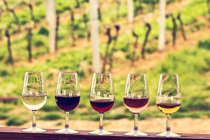 Excursão privada de meio dia a vinhos de Bordeaux