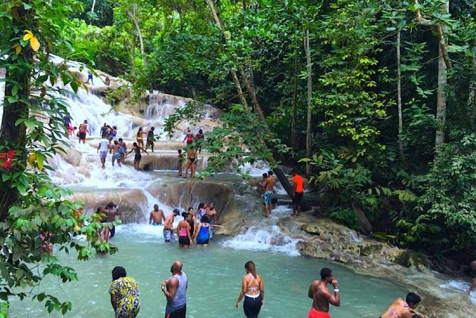 The Amazing Dunns River Falls (Private Tour)