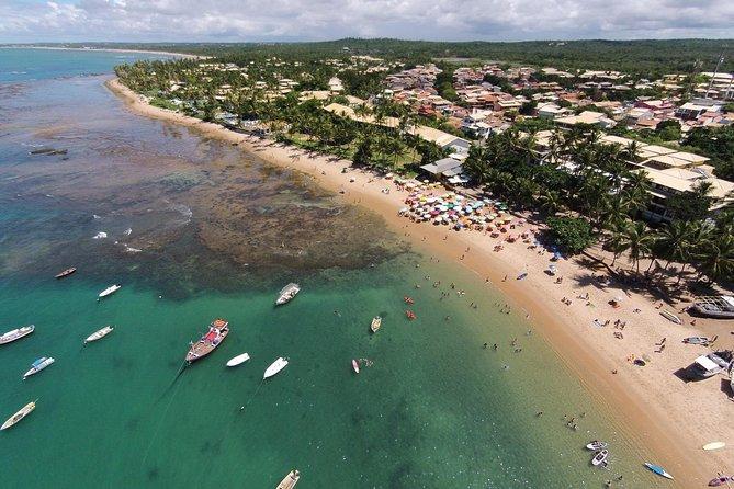 Praia do Forte Tour - Salvador de Bahia