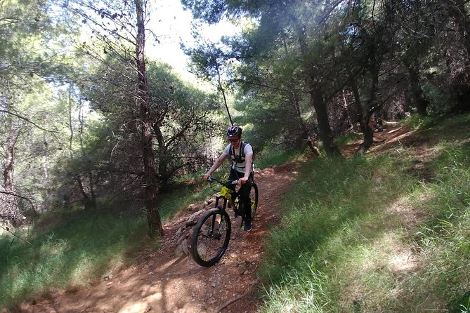 Ymittos Bike Safari (15min from town center). FREE TRANSFER to the trails photo 22