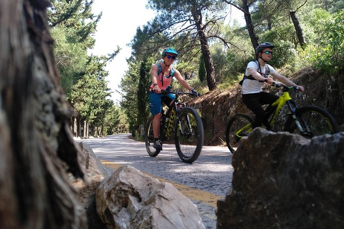 Ymittos Bike Safari (15min from town center). FREE TRANSFER to the trails