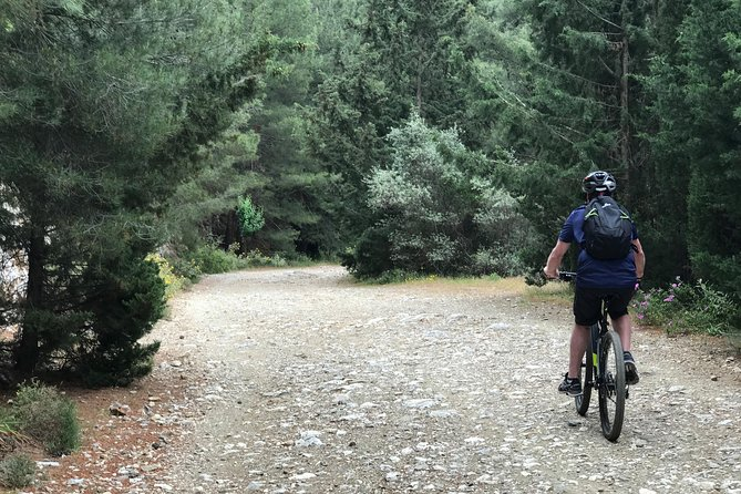 Ymittos Bike Safari (15min from town center). FREE TRANSFER to the trails photo 7