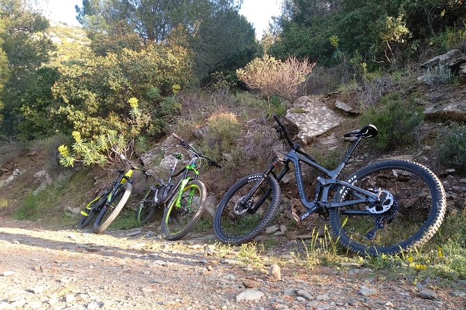 Ymittos Bike Safari (15min from town center). FREE TRANSFER to the trails photo 32