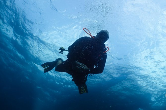 7-Night, 10-Dive Scuba Diving Experience in Carriacou photo 8