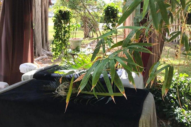 Our Tropical Outdoor Bamboo Garden for an Authentic Florida Expereince!