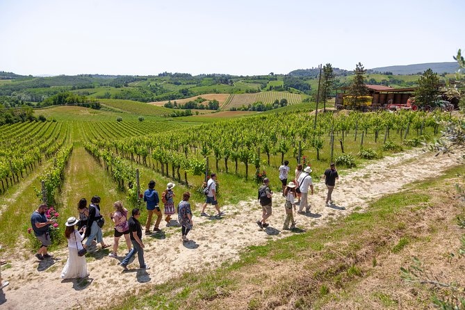 Tuscany in One Day Sightseeing Tour from Florence