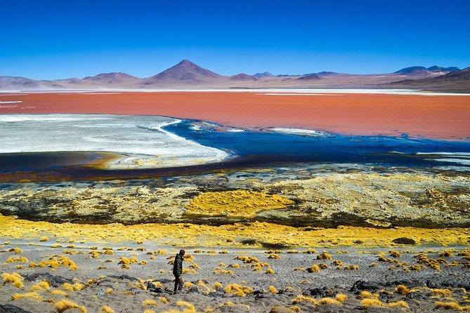 From Uyuni: 3days 2nights Salt Flat & Lagoons of Colors