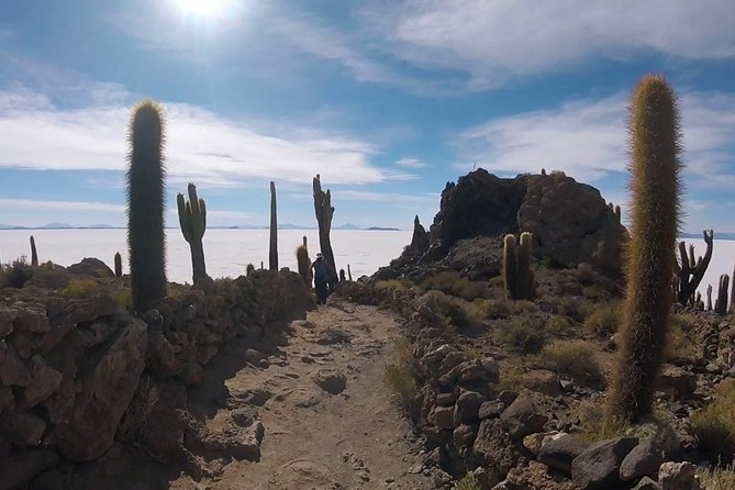 Fullday Uyuni salt flat from La Paz