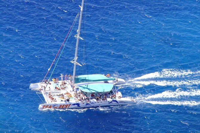 Cabo Girão Skywalk 4x4 Tour + Vineyards & Wine Tasting + Dolphin Watching