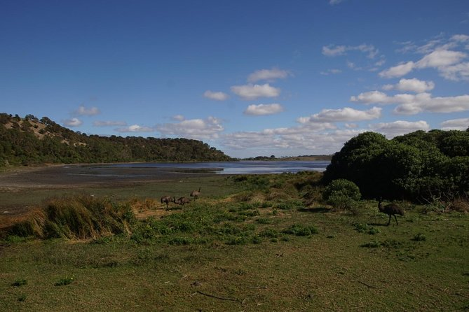 4 Day Group Camping Tour - Visit Grampians, Great Ocean Road and 12 Apostles