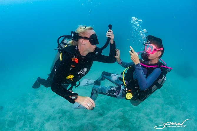 Try SCUBA Diving: 2 dives 1 day