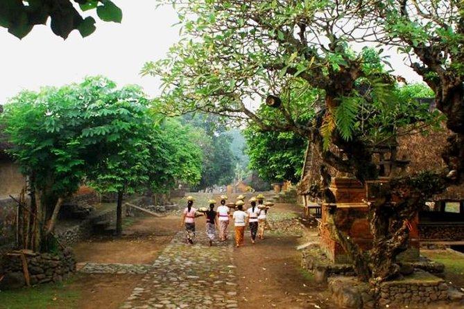 A Cultural Journey In East Bali: Bali Aga Trekking Tour