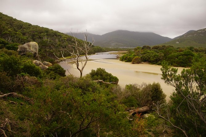 Private Wilsons Promontory Tour (price is per group) photo 1