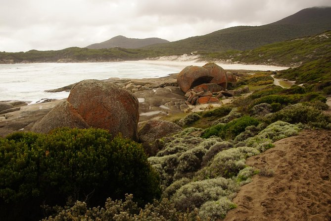 Private Wilsons Promontory Tour (price is per group) photo 2