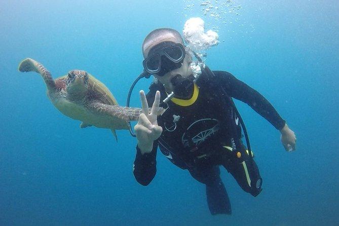 Xiao Liuqiu Intro Dive in Taiwan