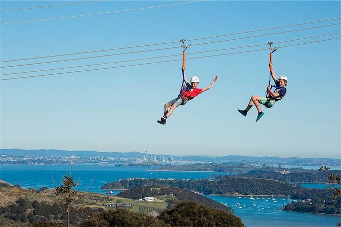 Waiheke Island: Zipline and Island Small Group Day Tour from Auckland photo 6
