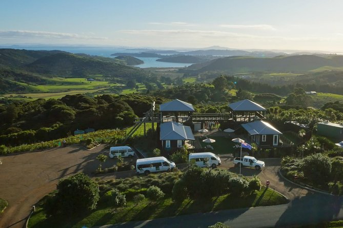 Waiheke Island: Zipline and Island Small Group Day Tour from Auckland photo 8