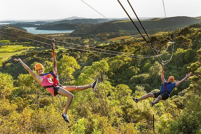 Waiheke Island Exploration and Zipline Day Trip from Auckland