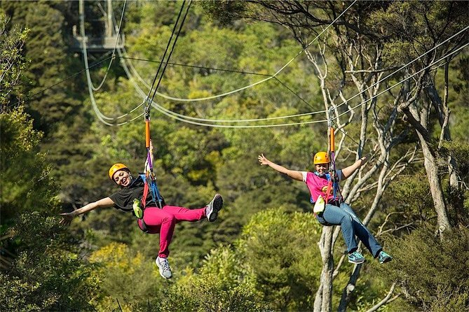 Waiheke Island: Zipline and Island Small Group Day Tour from Auckland photo 2