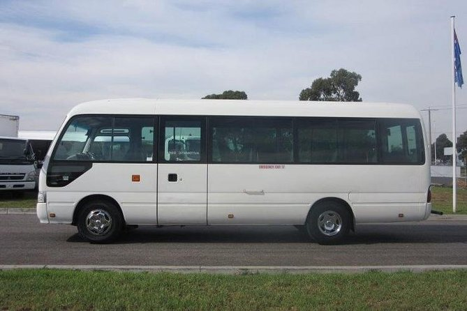 One way Transfer from Luxor Airport to Luxor Hotels – 25 Seater