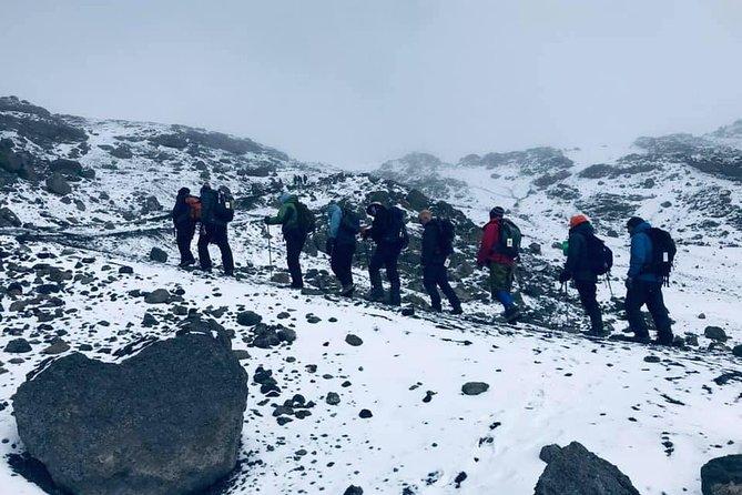 Mountain Kilimanjaro Climbing 8 Days Lemosho Route