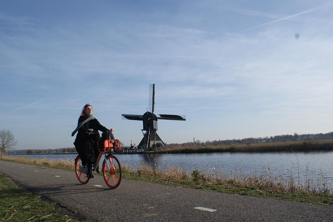 Kinderdijk Area Cycling Tour