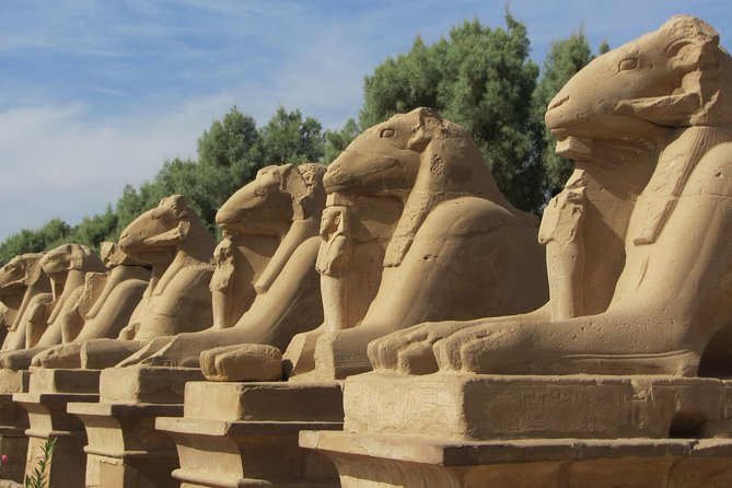 Luxor East Bank Private Tour: Karnak Temple - Luxor Temple