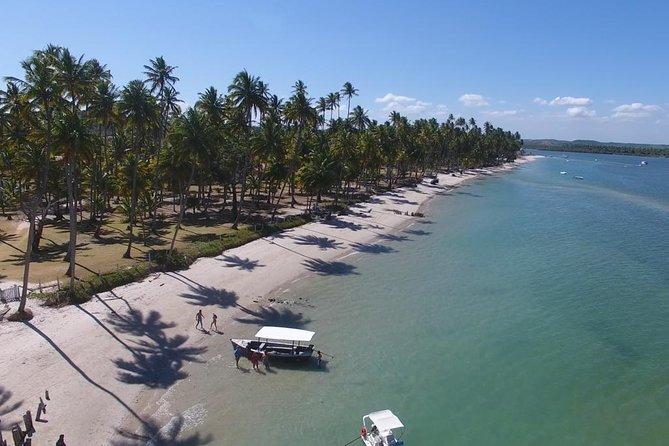 Private Transfer Recife Airport to Praia dos Carneiros By RECIFE TRANSLADO