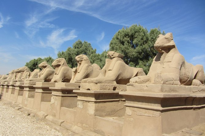 Safaga Port - Luxor Full Day Tour - West Bank and East Bank photo 7