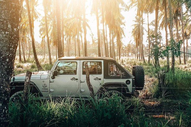 Private Jeep Experience - YS Falls & Pelican Bar (all-inclusive)