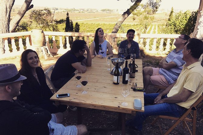 Valencia Wine Tour Wineries in Utiel Requena
