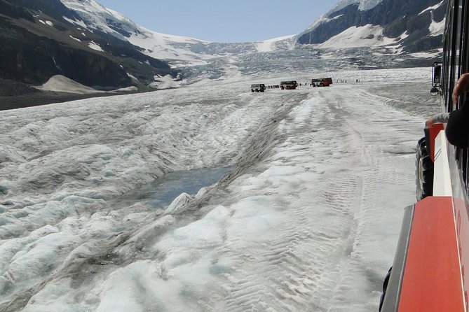 Transportation to Columbia Ice Field Tour