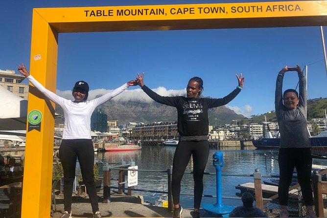 Excursão particular: Montanha da Mesa, pinguins de Boulder e Cape Point saindo da Cidade do Cabo