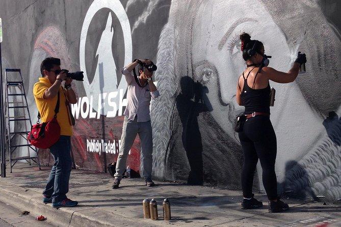 Miami's Best Graffiti Guide - Wynwood Duo Adventure - 2 Guests