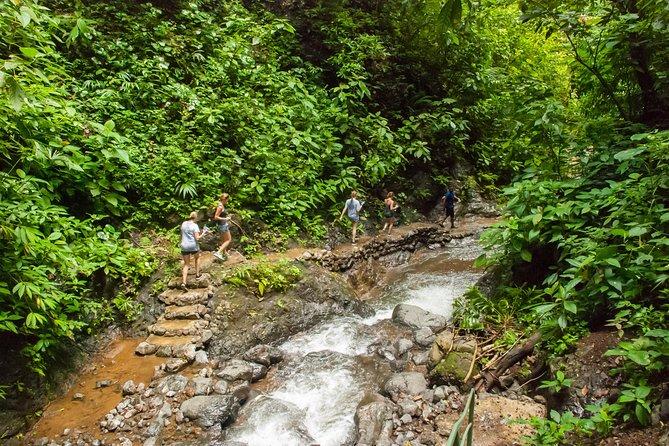 Horseback Riding and Waterfall Experience / Vista Los Sueños / Jaco Beach