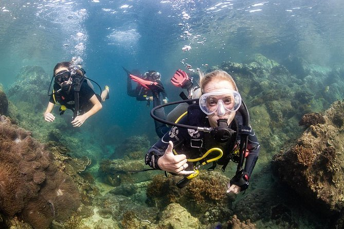 Scuba Diver course (get your license in 2 days)