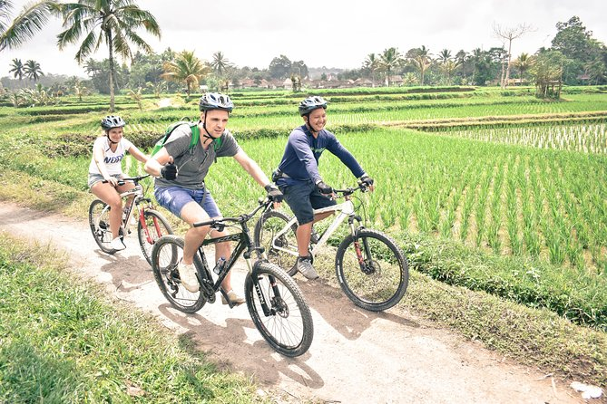 Bali Cycling Tour - exploring bali countryside by bike