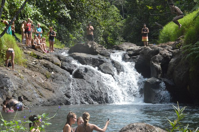 Suva Shore Excursion: Jet Boat thrill, Waterfall Trek, Culture & Lunch photo 17