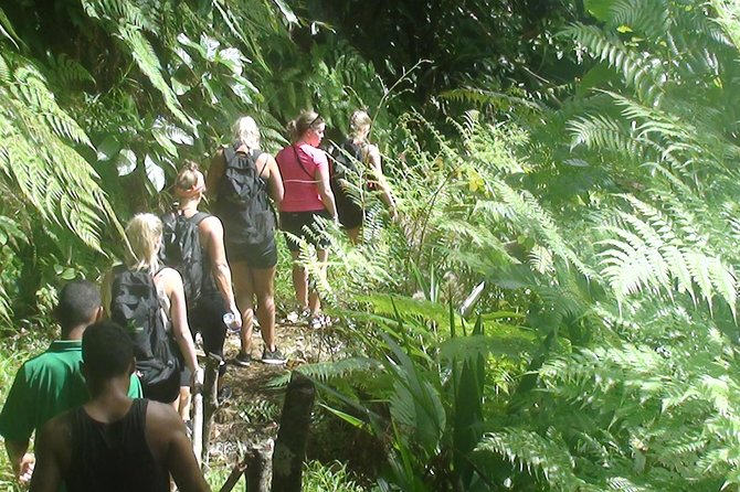 Suva Shore Excursion: Jet Boat thrill, Waterfall Trek, Culture & Lunch photo 30