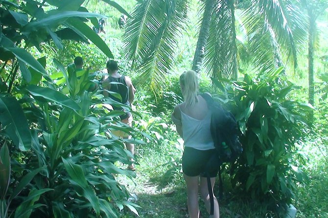 Suva Shore Excursion: Jet Boat thrill, Waterfall Trek, Culture & Lunch photo 3